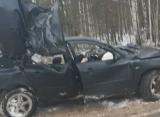 В ДТП в Клепиковском районе погибли два человека и пострадал ребенок 11 лет