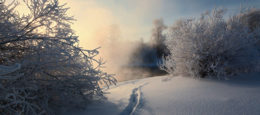 Синоптики обещают в Рязанской области похолодание до 10 градусов в воскресенье