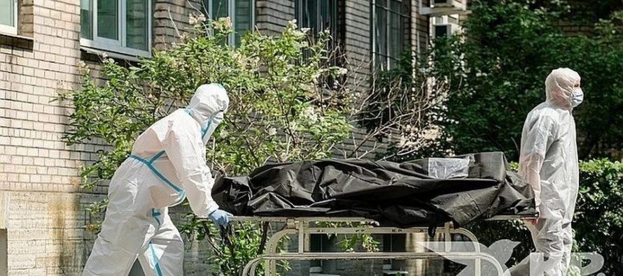 В Рязанской области обновился суточный максимум по смертям от Covid-19
