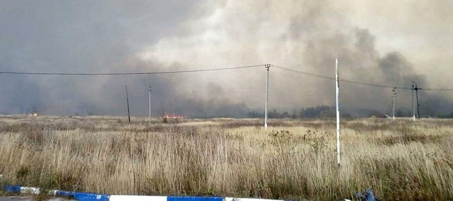 Военнослужащие инженерных войск обезвредили 7700 взрывоопасных предметов после пожара в Скопинском районе