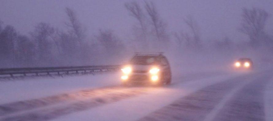 25 января в Рязанской области ожидаются осадки и сильный туман