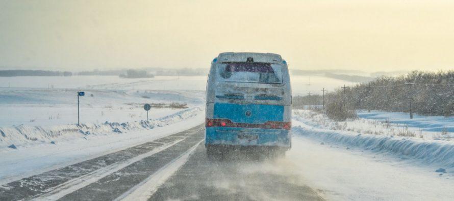 Рязанец пожаловался президенту России Путину на «транспортный беспредел» в городе