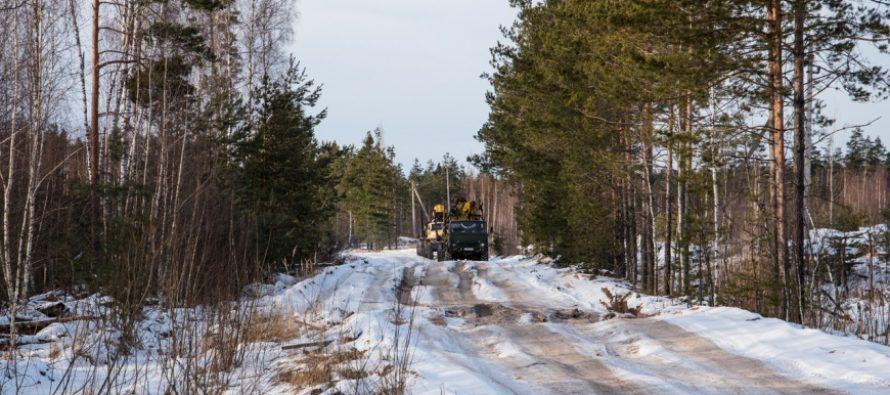 Суд обязал Минтранс Рязанской области отремонтировать дорогу к поселку Голованово