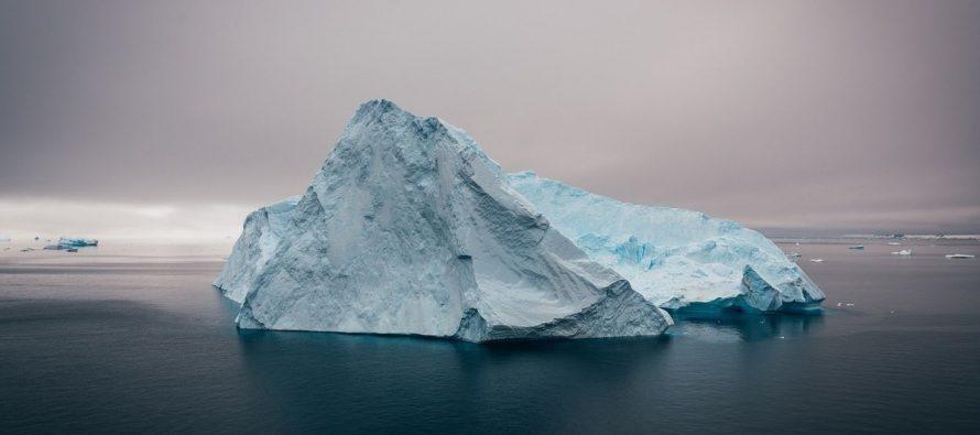 По ледником в Антарктиде ученые нашли неизвестные науке виды губок