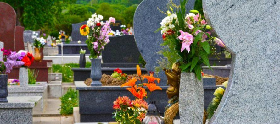В городской Думе Рязани обсудили увеличение территории кладбища «Богородское-2»