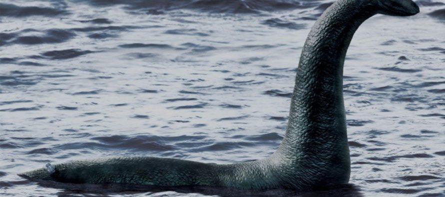 А был ли монстр: Ученые опровергли существование Лох-Несского чудовища