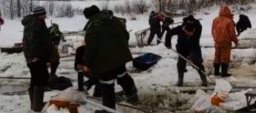 На «горящем» озере под Рязанью рыбаки вылавливают задыхающуюся рыбу