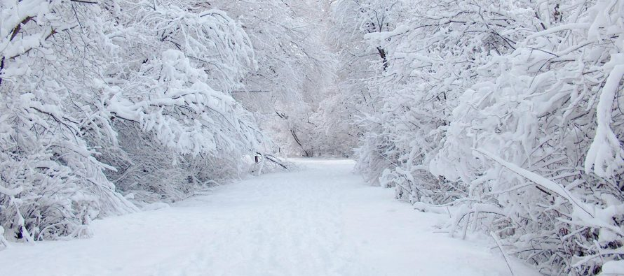 Опубликован «черный» список УК Рязани, которые не справились с уборкой снега и льда в 2021 году