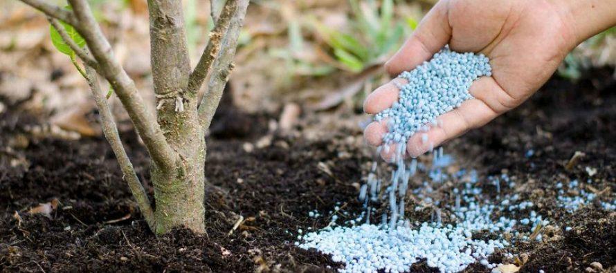 Человечество в опасности: на земле заканчивается жизненно важный природный ресурс