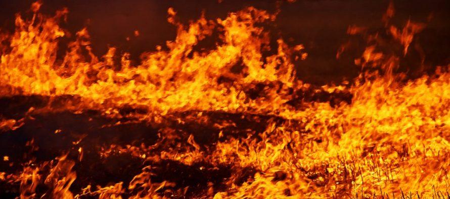 В Пронском районе многодетная мать с четырьмя детьми лишилась дома из-за пожара