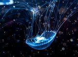 Астрономы впервые разглядели в небе «космическую медузу»