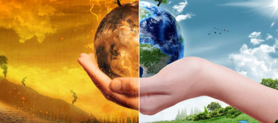 Nature Geoscience: Глобальное потепление станет причиной вымирания обитателей тропических зон