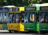 В Рязани могут заменить весь общественный транспорт