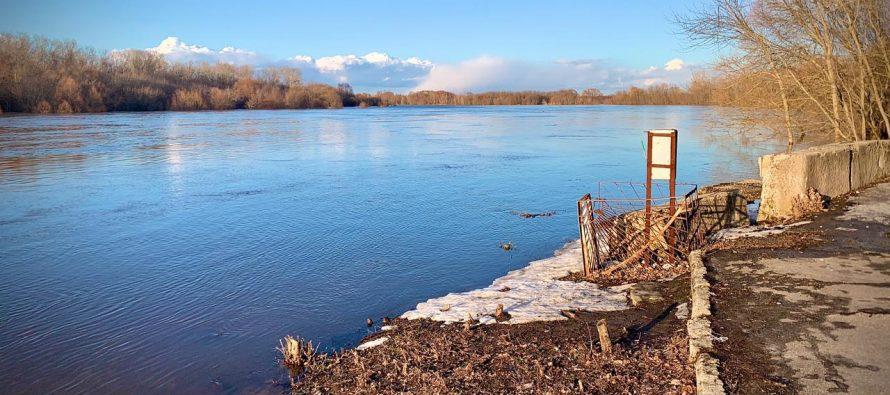 В рязанском Лесопарке из-за паводка затопило дорогу и причал