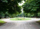 22 апреля стартует озеленение Верхнего городского сада в Рязани