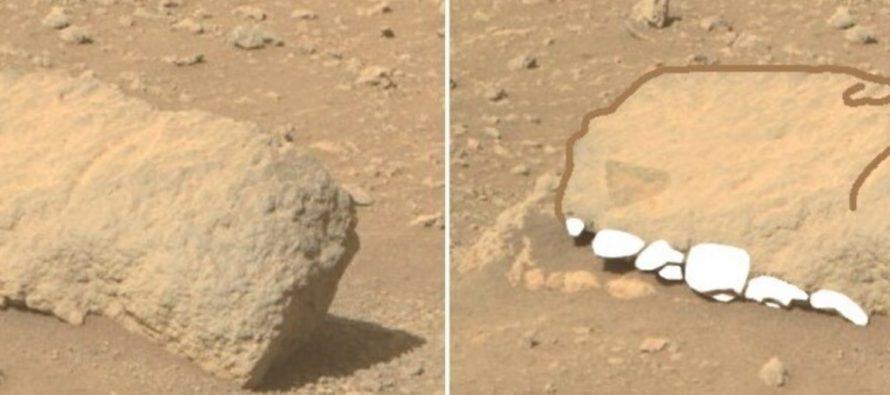 Злобин: Perseverance 15 апреля заснял на Марсе окаменевшую голову динозавра