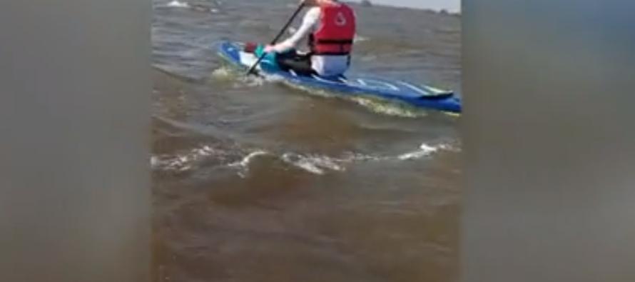 ВРязанской области на Оке спасли 27 сапсёрферов, унесенных течением