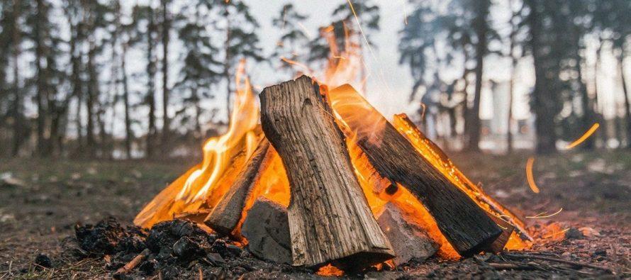 Популярные места отдыхов рязанцев в лесу патрулируют с беспилотником