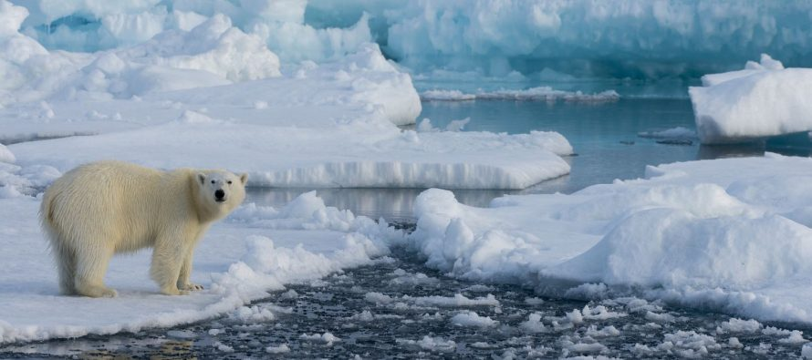 InfoBrics: США обостряют ситуацию в Арктике, чтобы вытеснить Россию