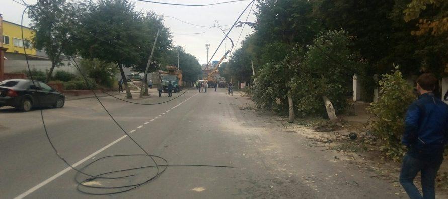 На Московском шоссе в Рязани упавшее из-за грозы дерево оборвало провода