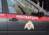 В Рязани задержали ранее судимого дебошира в развлекательном комплексе