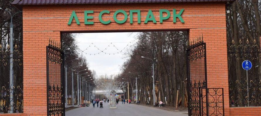 В Рязани подвели итоги голосования за благоустройство городских территорий на 2022 год