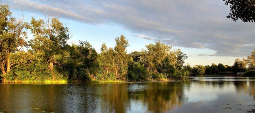 Дело о загрязнении реки Старицы канализационными стоками закрыто ввиду отсутствия правонарушения