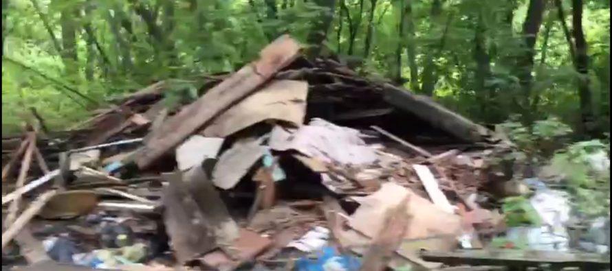 Рязанские экологи выразили возмущение свалкой на берегу Оки