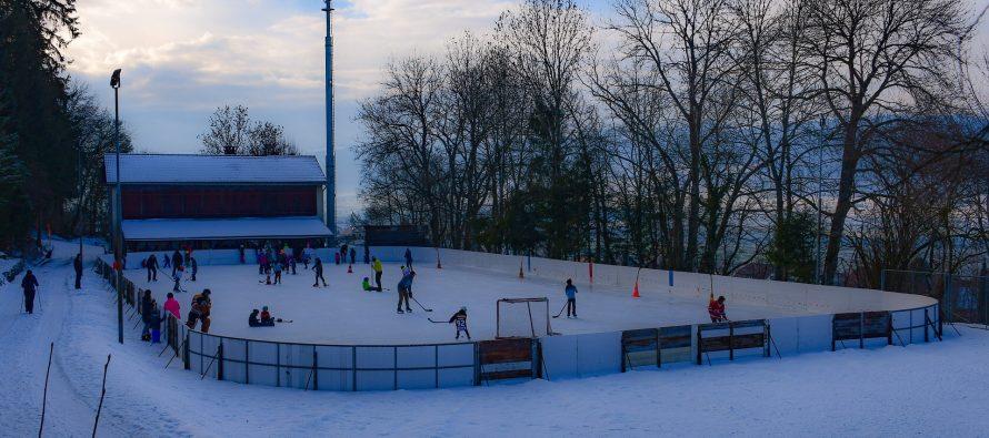 В рязанской Горроще в октябре появится новая хоккейная площадка