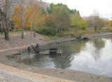 На расчистку пруда Серая Шейка на ул. Новоселов в Рязани выделили 714,5 тысячи рублей