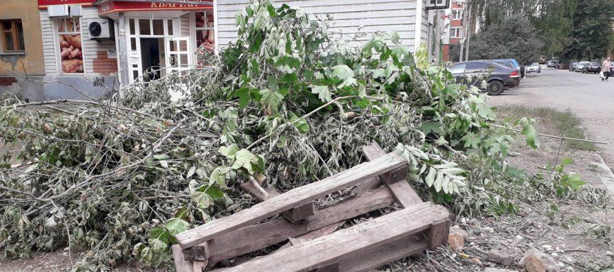 Мэрия Рязани пообещала на следующей неделе вывезти кучу мусора из сквера на Пушкина