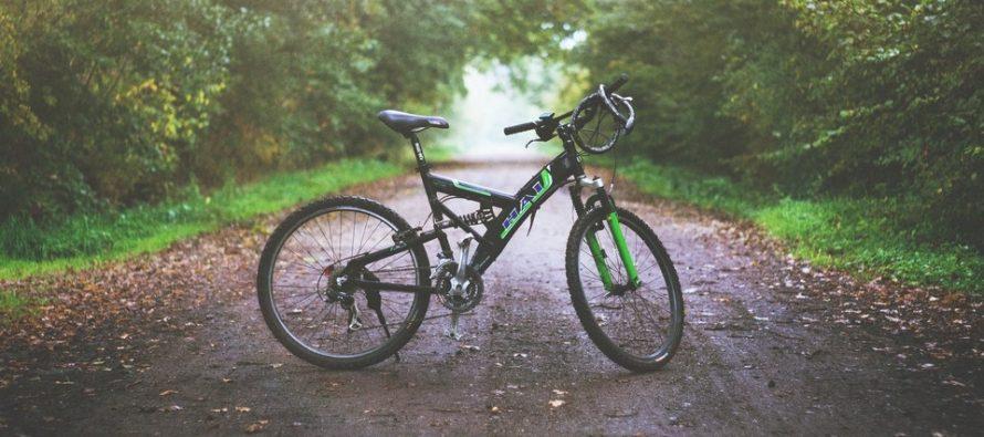 В рязанском Лесопарке 55-летняя велосипедистка попала под машину и получила серьезные травмы