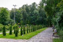 Депутаты гордумы Рязани увеличили площади зеленых зон под новые парки